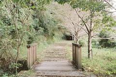 散策 (cotoko) Tags: 武田尾 takedao