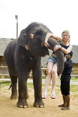 =DSG_8310 (achinoam84) Tags: thailand kwai 2012 слон путешествие