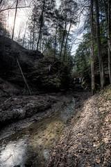 Turkey Run State Park (Baltic brat) Tags: creek rocks indiana canyon hdr turkeyrun turkeyrunstatepark nikcolorefexpro canon1740f4lusm viveza