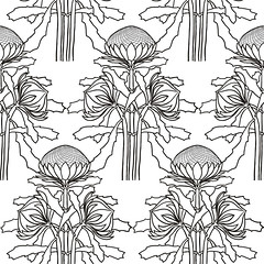 'Black and white waratahs for coloring in': design detail (Su_G) Tags: blackandwhite contest formal australia artnouveau wildflowers waratah craftsman wildflower artsandcrafts australiana sug waratahs designdetail spoonflower australianwildflower lucienhenry afterlucienhenry blackandwhitewaratahsforcoloringin floralcoloringbookwallpapercontest