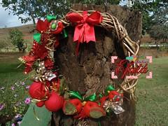 Guirlanda Rstica Natalina (Atelier Efat) Tags: red bird natal glitter gold glow handmade pssaro felt wreath guirlanda feltro decorao crhistmas cip atelierefata