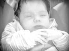 Muitos bebes e caveira ( Dy and Friends ) Tags: e caveira bebes muitos