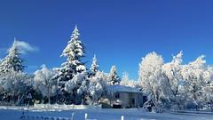 Winter in Iceland (skolavellir12) Tags: snow winter iceland white blue selfoss arborg