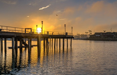 The Morning Sun Appiers (tquist24) Tags: california danapoint danapointharbor hdr nikon nikond5300 clouds geotagged light morning ocean orange pier sky sun sunrise water unitedstates reflection reflections