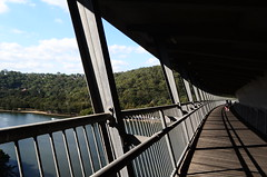 Beautiful walkway on Wolonora bridge (kreiZee) Tags: park bridge flowers blue autumn food house flower bird heritage fall nature grass yellow garden jumping opera university purple heart harbour sydney royal victoria botanic quadrangle wolonora