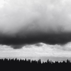 Pine trees and clouds (Cutflat) Tags: trees bw cloud mountains switzerland pines iphone