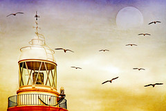 it will shine.  calling me (1crzqbn) Tags: lighthouse seascape color textures 7d ie costabrava moonscap