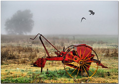 Farm final.(replacement) (agphoto100) Tags: mist tractor tree bird field grass misty fog canon farm linville machinery queensland crow redynamix sx130is canonsx130is