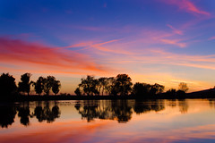 Forebay Sunset (Buuck Photography) Tags: sanfrancisco california ca blue trees sunset sky lake reflection nature water colors silhouette clouds composition painting skyscape photography reflecting evening amazing intense colorful fotografie photographer photographie vibrant unique perspective scenic picture adventure story reflect bayarea norcal walnutcreek exploration fotografi waterscape featherriver fotografa oroville buttecounty    forebay buuck nhipnh d7000 potograpiya buuckphotos buuckphotography  liveathomelikeatraveler