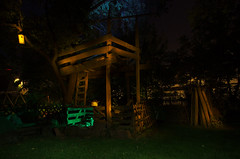 A Child's Dream (Crux_VII) Tags: lightpainting night backyard dream birdhouse treehouse fantasy dreams flashlight imagination nightmare