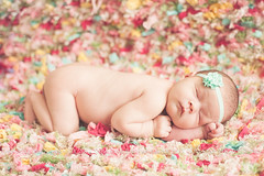 Newborn baby girl (tarastarphotography) Tags: newborn windowlight 50mm18 tomballtx newborngirl newbornphotography nikond700 tomballnewbornphotographer tomballbabyphotographer tomballphotographer