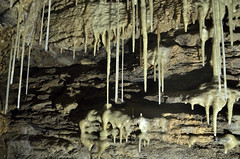 _DSC1176 (JohannesLundberg) Tags: underground se sweden flash limestone cave geology gotland speleothem sb800 caver silurian cavephotography speleologist touristcave lummelundagrottan lummelundacave sb910 yongnuorf603n
