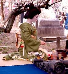 Geisha making tea at a Plum Blossom festival in Kyoto (Ronin Dave) Tags: japan kyoto geisha japaneseculture kitanotenmangushrine umematsuri plumblossomfestival