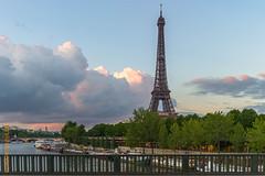 Paris, 2010 (Edi Bhler) Tags: sky plant paris tree nature seine clouds river frankreich ledefrance natur pflanze himmel wolken waters fluss baum gewsser 28300mmf3556 nikond800 tourdeiffellm