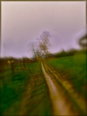 Rural observation - reloaded 4/8 (MizzieMorawez) Tags: icm intentionalcameramovement