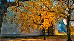 Belv-Castle-Autumn_0126dc2 (JB Artful Photo) Tags: park nyc newyorkcity autumn newyork color fall colors beautiful pretty centralpark manhattan newyorknewyork nikond700 distagont2821 carlzeiss21mm