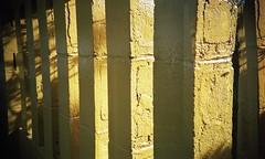 Cinderblock Wall (neilsonabeel) Tags: street new york city nyc film wall brooklyn 35mm temple lomo lca lomography buddhist hill front vinegar analogue cinderblock