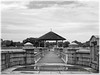 P1020882 (Steven_Teh) Tags: singaporelowerpiercereservoir