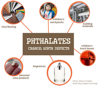 Mind the Store for Safer Chemicals: Phthalates