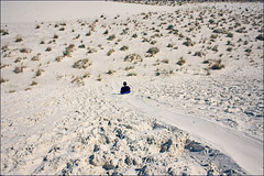(K. Sawyer Photography) Tags: white sand desert dunes hill sledding bushes shrubs saucer whitesandsnewmexico whitesandsnationalmonument alamogordonewmexico gypsumdunes