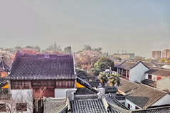 Relics - Suzhou, China (dlau Photography) Tags: china old travel roof urban building architecture suzhou view top side country ngc sightseeing lifestyle style tourist uptown   visitor relics