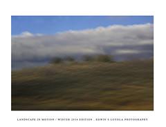 LANDSCAPEINMOTION2015-003 (Edwin Loyola) Tags: winter abstract nature landscape seasons icm intentionalcameramovement landscapeinmotion edwinsloyola edwinloyola edwinsloyolaphotography