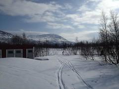 Storulvån Photo