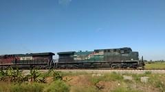¡La bestia! 🚂📷 (dianarivera4) Tags: tren labestia mexico oaxaca paisaje transporte motog4plus