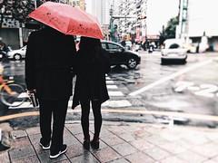#365project #day21 #rain #umbrella #streetphotograph #streetshot #street #xindian #taipei #taiwan #iphone6 (shuting chuang) Tags: 365project day21 rain umbrella streetphotograph streetshot street xindian taipei taiwan iphone6