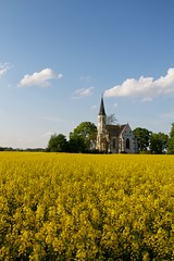White church in yellow field long view (Michael Tracy's photos) Tags: poland nyas