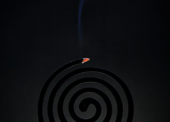 Smoky Coil [Explored] (Bhaskar Dutta) Tags: india abstract smoke creative mosquito conceptual coil ideas repellent yahoo:yourpictures=curves