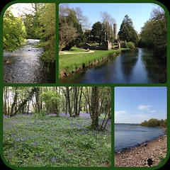 Out on the bike (tjmcevoy) Tags: castle bluebells mtb antrim nationalcyclenetwork loughneagh diptic dipticapp