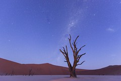 Deadvlei nightfall 2 (Gies!) Tags: stars namibia melkweg nightfall deadvlei namibie