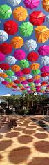 Flying umbrellas // Paraguas voladores (angeldominguez) Tags: color colors umbrella mall flying air centro colores sombrilla paraguas aire lorca comercial voladores volador almenara uploaded:by=flickrmobile flickriosapp:filter=nofilter