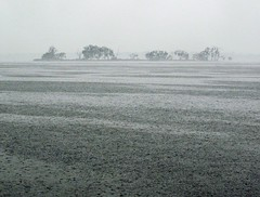 Rain patterns (deanspic) Tags: texture water rain weather pattern patterns surface raindrops ripples raining stlawrenceriver g10 rainpatterns berginisland