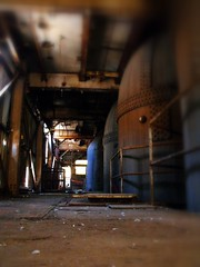 To The Domes (Anything for thee Shot) Tags: abandoned metal rust quiet pigeons awesome rip explore creepers sprawling
