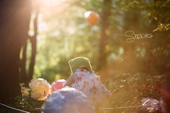 A little bit of sunshine (Snowies Photography) Tags: girl forest nikon toddler natural lollipop sunflare d600