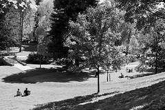 St. Hanshaugen, Oslo, Norway (bm^) Tags: park city travel trees shadow urban bw panorama sun white black tree nature girl st oslo norway zeiss blackwhite bomen nikon zwartwit no boom carl akershus schaduw zwart wit parc zon meisje stad noorwegen hanshaugen planart1450 d700 zf2 planar5014zf nikond700