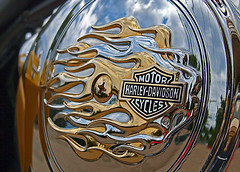 0007433 (To all that visit, Thank you) Tags: canada reflection emblem nb harley chrome 200views davidson harleydavidsonmotorcycles ©allrightsreserved nbphoto