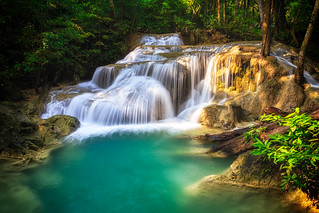 Deep forest waterfall in HDR