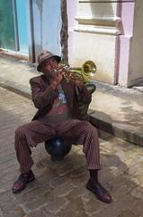 Blow That Horn (tamaso64) Tags: people havana cuba streetscene busker streetartists republicadecuba habanacity canoneos1100d vision:outdoor=0845