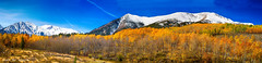Colorado Rocky Mountain Independence Pass Autumn Panorama (Striking Photography by Bo Insogna) Tags: travel november autumn trees winter red vacation sky panorama orange white mountain snow mountains tree green nature beautiful beauty clouds rockies gold october colorado colorful seasons forsale background decoration rocky panoramas peak september snowcapped autumncolors fallfoliage gifts cottonwood aspens rockymountains snowing wilderness independencepass mountelbert coloradonature autumnlandscape coloradoautumn jamesboinsogna vision:mountain=0888 vision:outdoor=099 vision:clouds=0694 vision:sky=0887