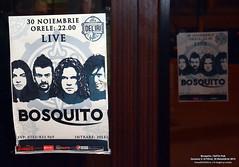 30 Noiembrie 2013 » Bosquito