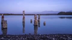 krito Lagoon (Thomas J. Walsh) Tags: newzealand reflection beach water lagoon pillars westcoast krito