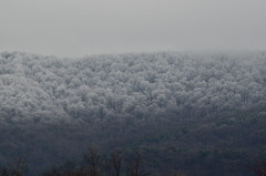 Thawline (Christopher Wallace) Tags: trees winter white snow mountains ice nature beautiful beauty weather fog clouds forest lens landscape geotagged march woods nikon melting natural cloudy earth foggy freezing telephoto va melt 70300mm geotag forests thaw virgina blacksburg 70300 southwestvirginia newrivervalley applachia d7000 nikond7000 thawline