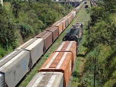 16616 DDM45 #834 + BB40-2 #6510 (de traz) tr J593 com trem J593 chegando em Uberlndia MG, vindo de Uberaba     (2) (Johannes J. Smit) Tags: brasil vale trens vli