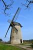 Bidston Windmill (5) (Andrew_D_Hurley) Tags: trees england tree bluesky birkenhead blueskies footpath wirral merseyside bidston bidstonhill bidstonwindmill wirralwalk wirrallandmark wirralfootpath bidstonwalk