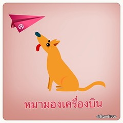 #linecamera #สำนวนไทย #สำนวน #หมามองเครื่องบิน #dogs #animals #pets #planes #high #hopes #expectation #over #beyond #realistic