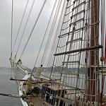 Rostock - Segelschiff »Santa Barbara Anna« im Rostocker Stadthafen (4) thumbnail