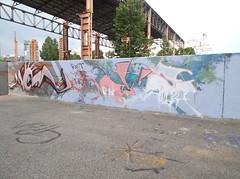 riot your moan/ 3zeta to albi (en-ri) Tags: parco muro wall writing torino graffiti rosa dora azzurro marrone moans
